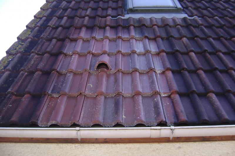 Entretien toiture Peinture toiture Hydrofuge toiture